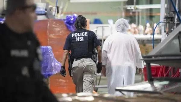 Denuncian explotación secreta de inmigrantes en plantas de carne de pollo de todo el país