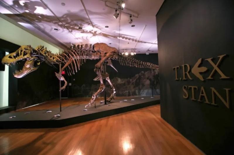Christie's pondrá a subasta esqueleto de Tyrannosaurus Rex