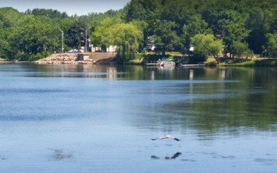 ahogada en el lago Gervais