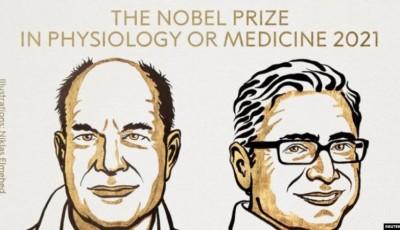 Premio Nobel de Medicina 2021